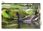 Moor Hen - Red Nose Carry-all Pouch