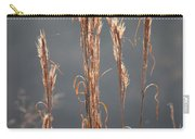 Morning Sunshine On Tall Reeds Carry-all Pouch