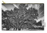 Moss-draped Live Oaks Carry-all Pouch