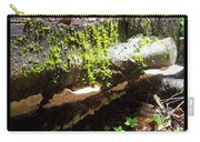 Mossy Waterfall On Mushroom Rock Carry-all Pouch