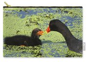 Mother Common Gallinule Feeding Baby Chick Carry-all Pouch