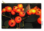 Mountain Ash Berries Carry-all Pouch