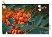 Mountain Ash Carry-all Pouch