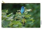 Mountain Bluebird Carry-all Pouch