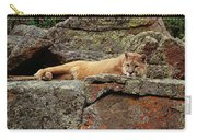 Mountain Lion Puma Concolor Lounging Carry-all Pouch by Gerry Ellis