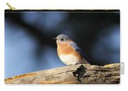Mr. Bluebird Carry-all Pouch