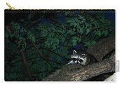 Mr. Raccon Carry-all Pouch