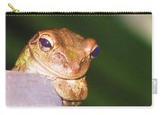 Mr. Toad Carry-all Pouch