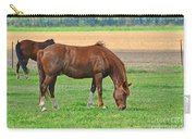 Munching Sweet Spring Grass I Carry-all Pouch