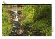 Munising Falls 1 Carry-all Pouch