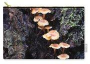 Mushroom Parade Carry-all Pouch