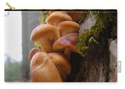 Mushrooms And Lichen Carry-all Pouch