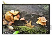 Mushy Chicks Carry-all Pouch