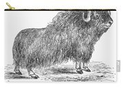 Musk Ox Carry-all Pouch
