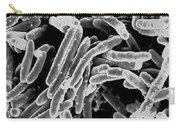 Mycobacterium Tuberculosis Bacteria, Sem Carry-all Pouch by Science Source