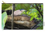Nankeen Night Heron Carry-all Pouch