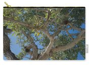 Naples Tree Carry-all Pouch