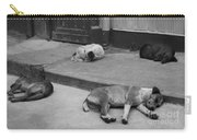Napping Friends In Valparaiso Carry-all Pouch