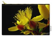 Native Bush Flower Carry-all Pouch