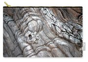 Natural Abstract 11 Carry-all Pouch