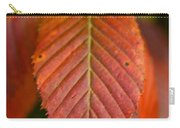 Natural Bronze Carry-all Pouch