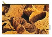 Natural Sponges Carry-all Pouch