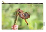 Nature Square - Saddleback Dragonfly Carry-all Pouch