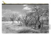 New Mexico Series - Bare Beauty Carry-all Pouch