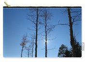 New Mexico Series - Bare Tree Sky  Carry-all Pouch