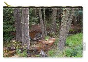New Mexico Series - Near The River Carry-all Pouch