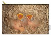 Newborn Robin Nestlings Carry-all Pouch