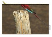 Northern Carmine Bee-eater Carry-all Pouch by Tony Beck