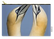 Northern Gannet Morus Bassanus Pair Carry-all Pouch