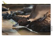 Northern Pintail Carry-all Pouch