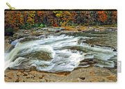 Ohiopyle Falls Carry-all Pouch