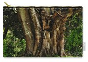 Old Fig Tree Carry-all Pouch by Kaye Menner