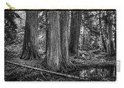 Old Growth Cedar Trees - Montana Carry-all Pouch