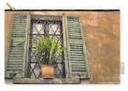 Old Window And A Green Plant Carry-all Pouch
