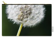One Dandelion Flower Isolated  Carry-all Pouch