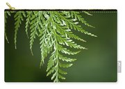One Hanging Fern Carry-all Pouch