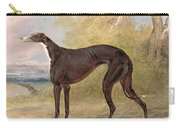 One Of George Lane Fox's Winning  Carry-all Pouch