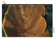 Orange And Brown Sponge, North Carry-all Pouch