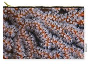 Orange Gorgonian Sea Fan With White Carry-all Pouch