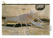 Orange Lake Cave Crayfish Carry-all Pouch