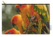 Orange Parakeets Chiang Mai Thailand Carry-all Pouch