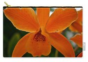 Orange Sherbert  Orchid Carry-all Pouch
