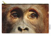 Orangutan Eyes Borneo Carry-all Pouch