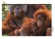 Orangutan Mother And Baby Carry-all Pouch