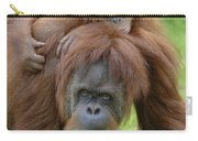 Orangutan Pongo Pygmaeus Female Carry-all Pouch