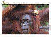 Orangutans Carry-all Pouch